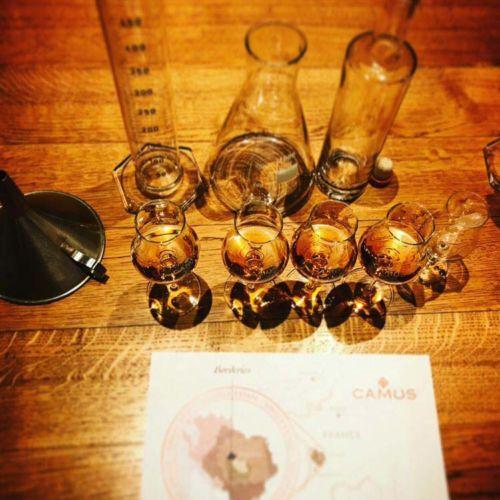 tasting cognac liquor