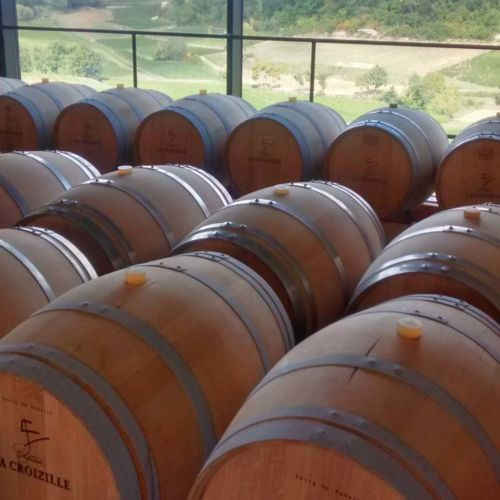 wine making process and tasting