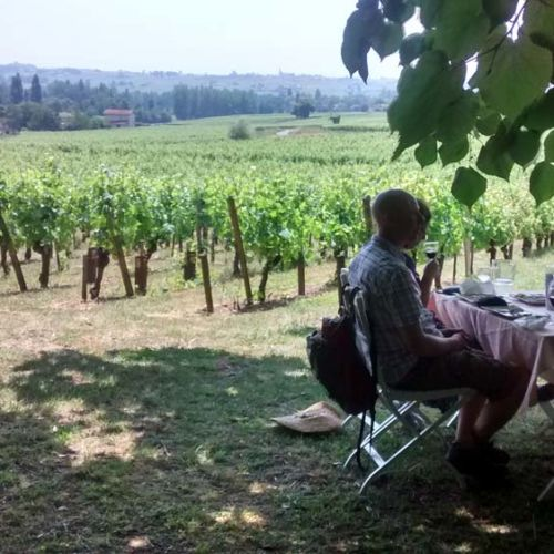 visite guidée vignoble de Saint-Emilion