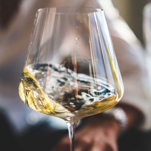 glasses of bordeaux wines